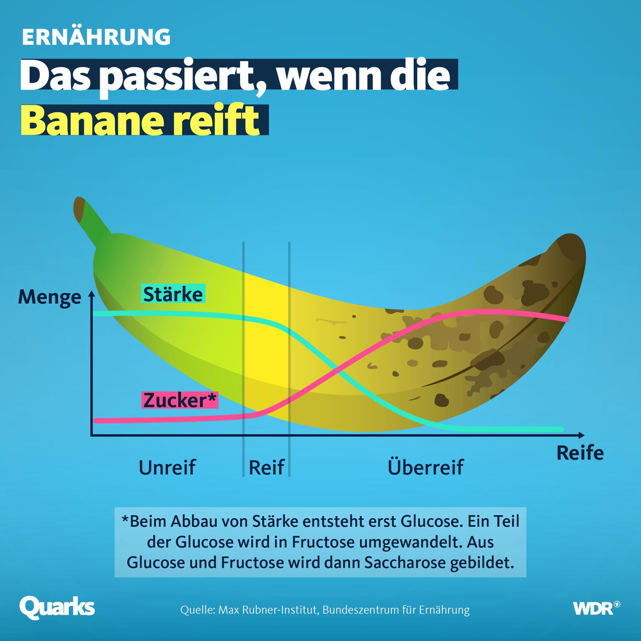 Bananengrafik mit dem Titel: Das passiert, wenn eine Banane reift