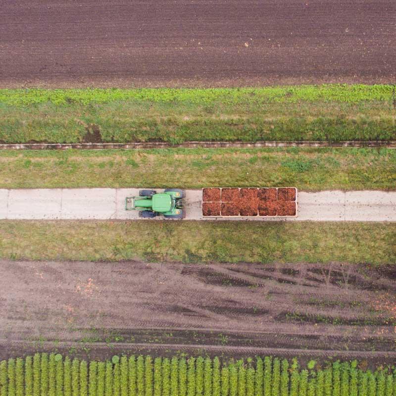 Ein Traktor mit Anhänger fährt zwischen zwei Äckern auf einer Straße.