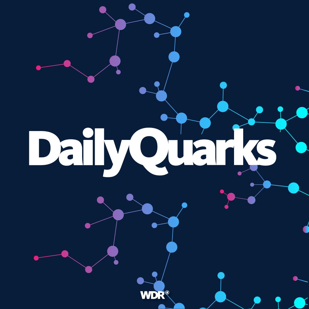 DailyQuarks