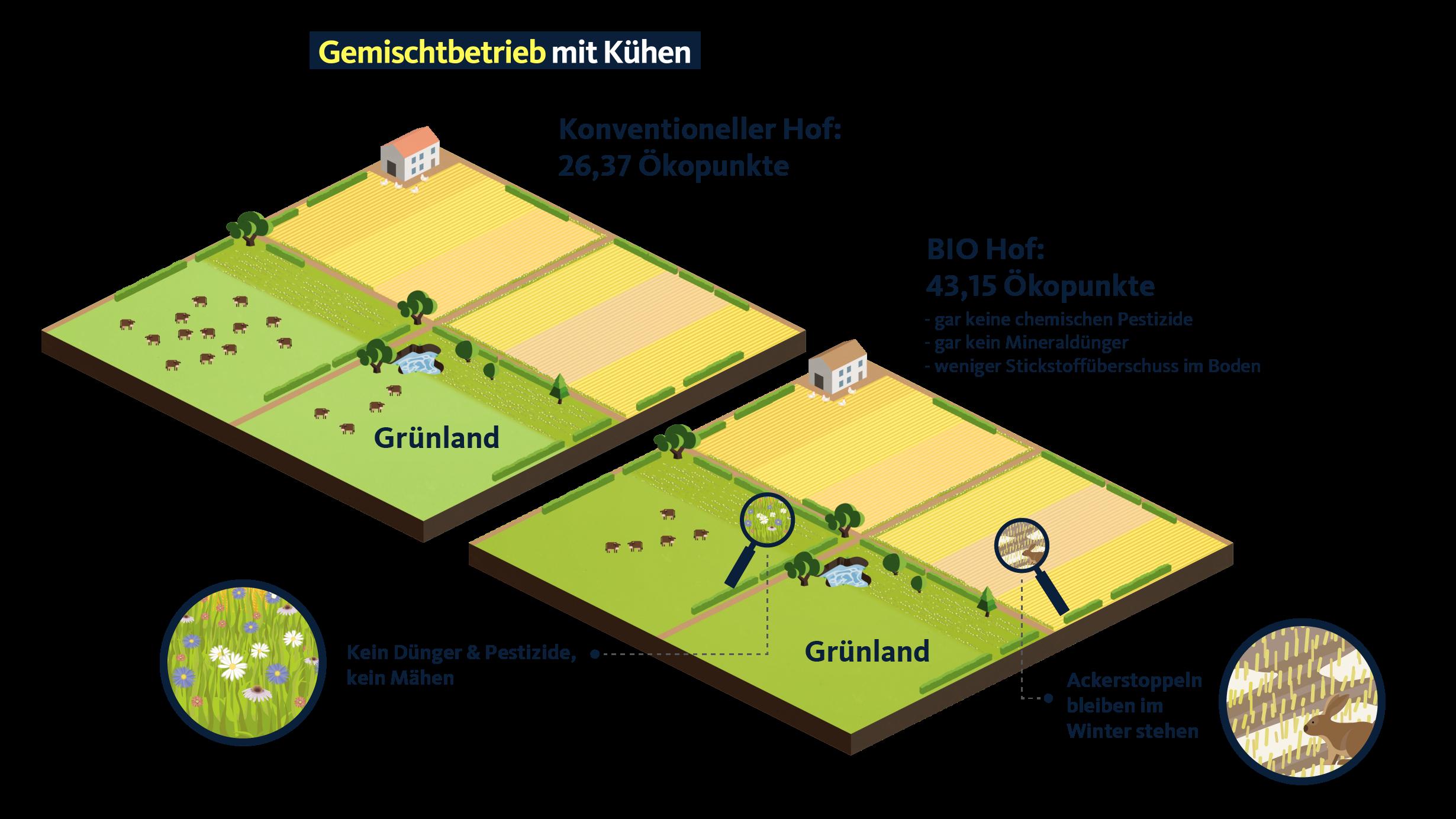Vergleich eines Bio-Hofs mit einem konventionellen Hof