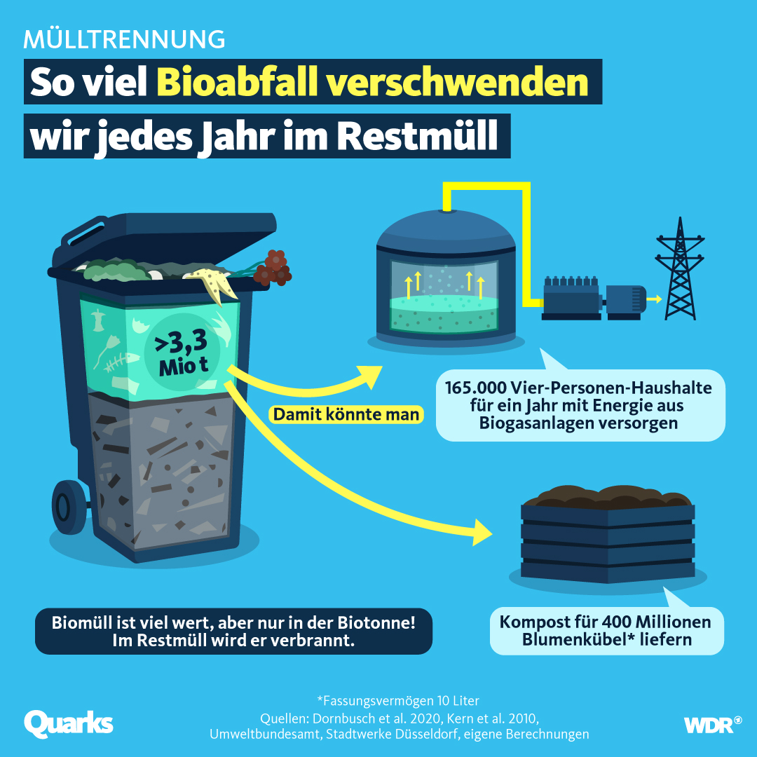 So viel Bioabfall verschwenden wir jedes Jahr im Restmüll