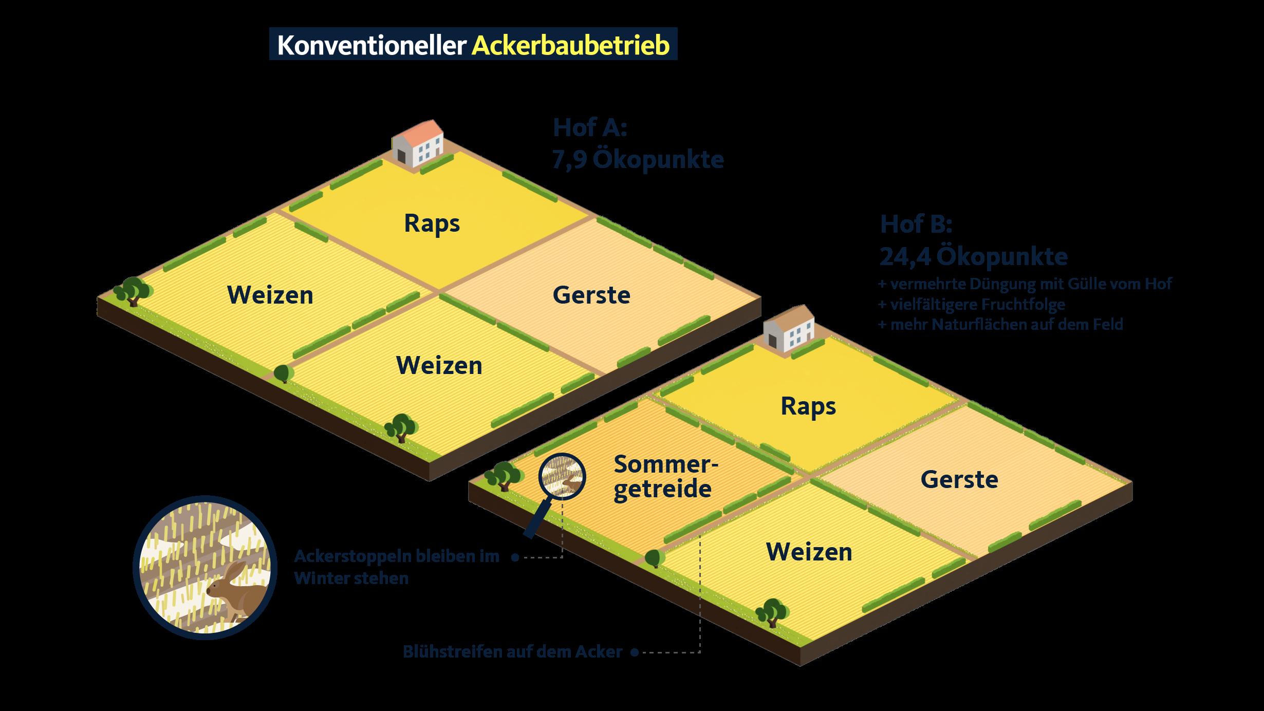 Grafik Konverntioneller Ackerbau.