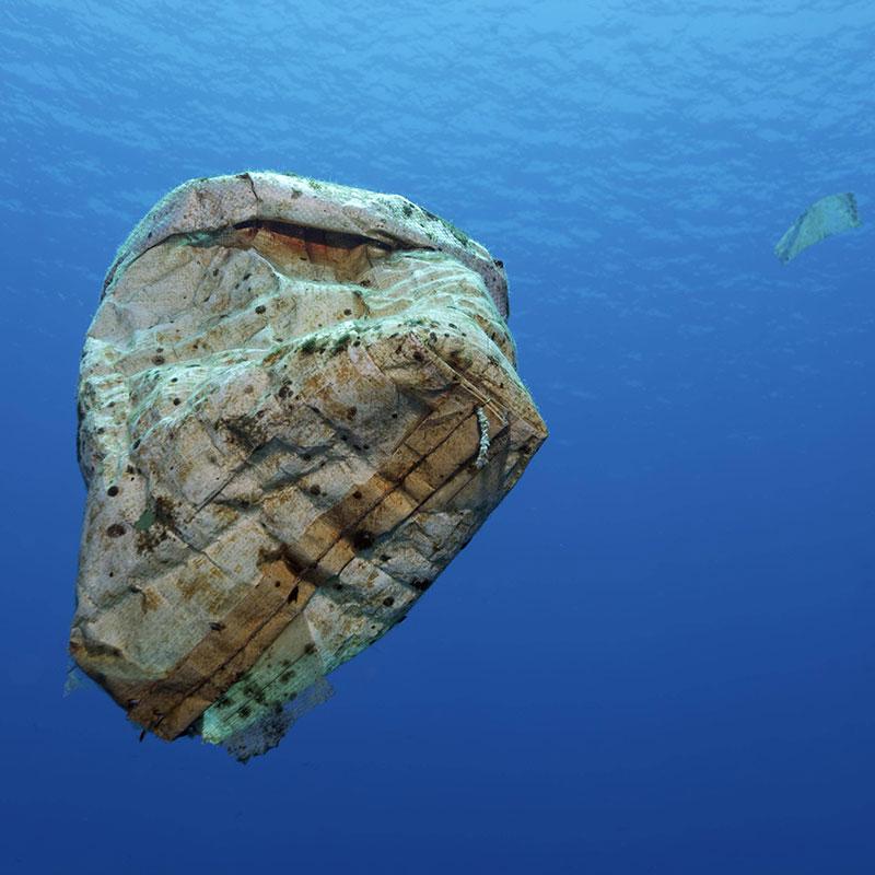Es gibt noch viel mehr Fische im Meer Dating