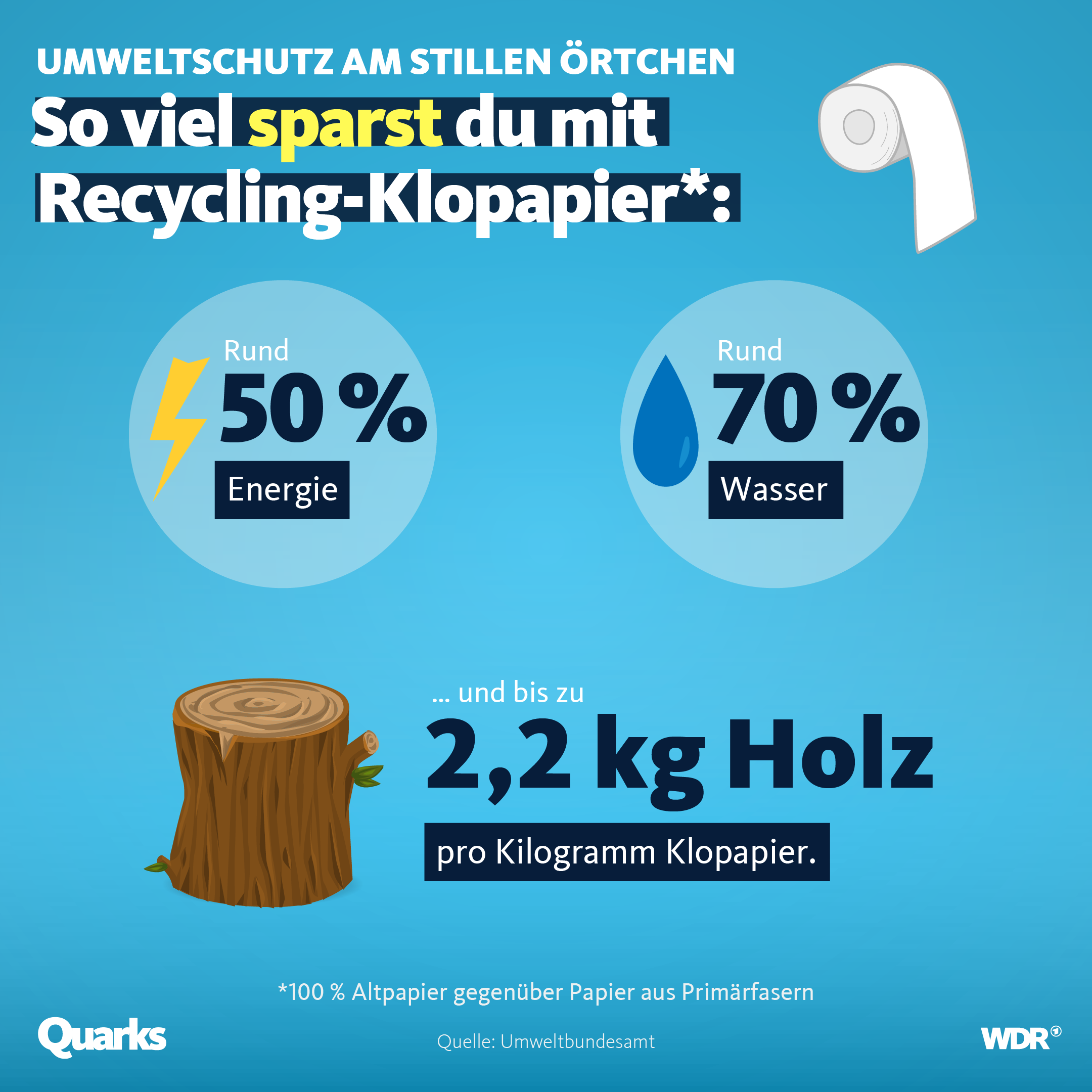 So viel sparst du mit Recycling-Klopapier