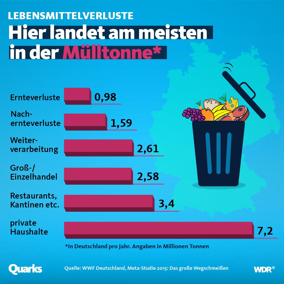 Wer wirft die meisten Lebensmittel weg? - quarks.de