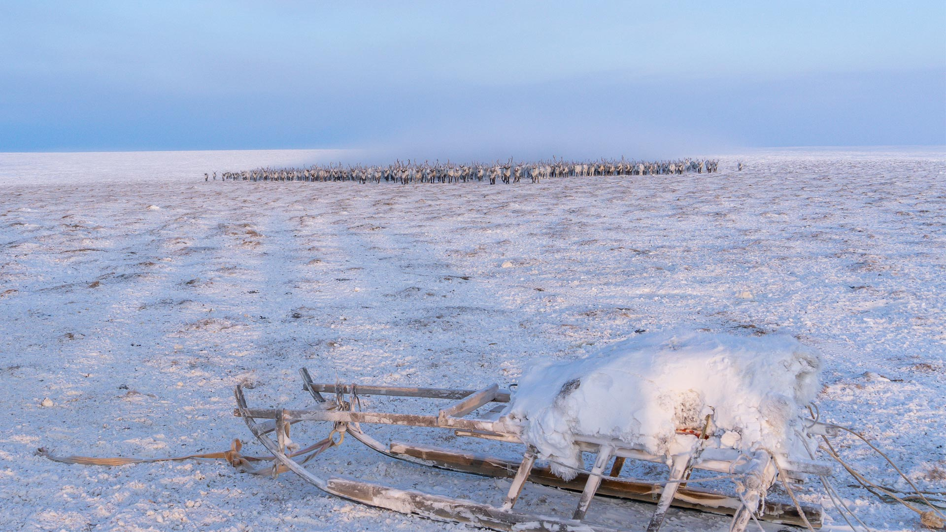 Eine aufbrechende Eisfläche in Nordsiberien