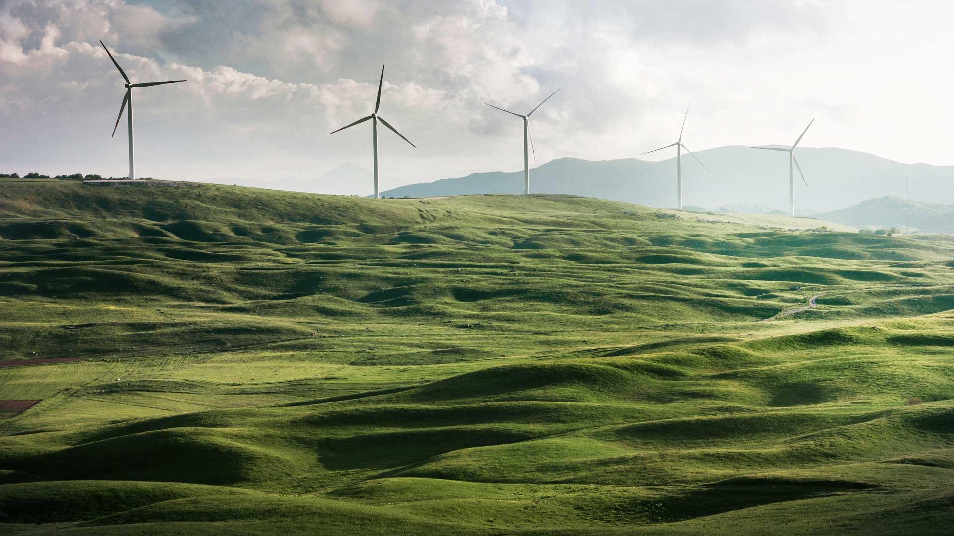 Hügel mit Windrädern.