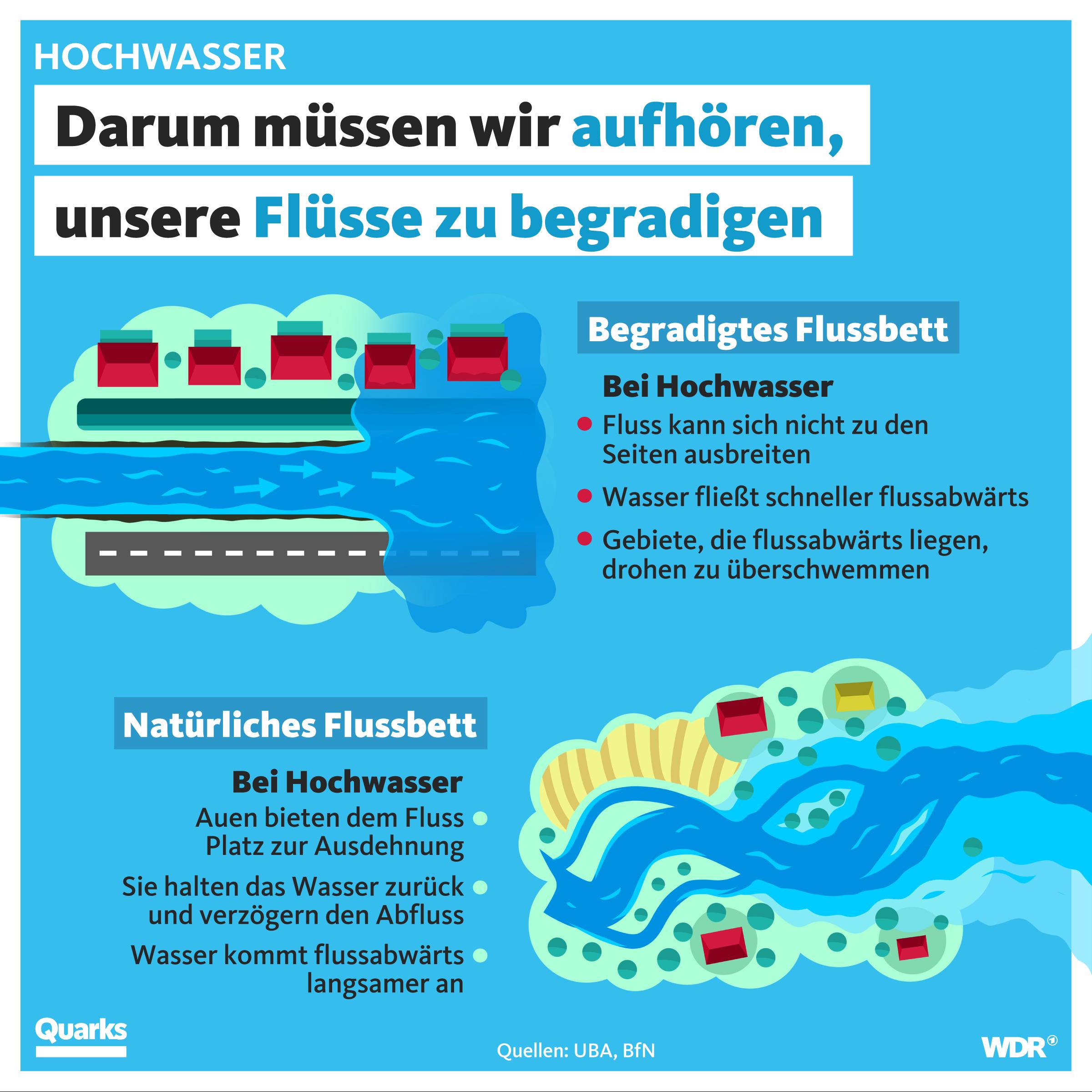 Darum müssen wir aufhören, unsere Flüsse zu begradigen